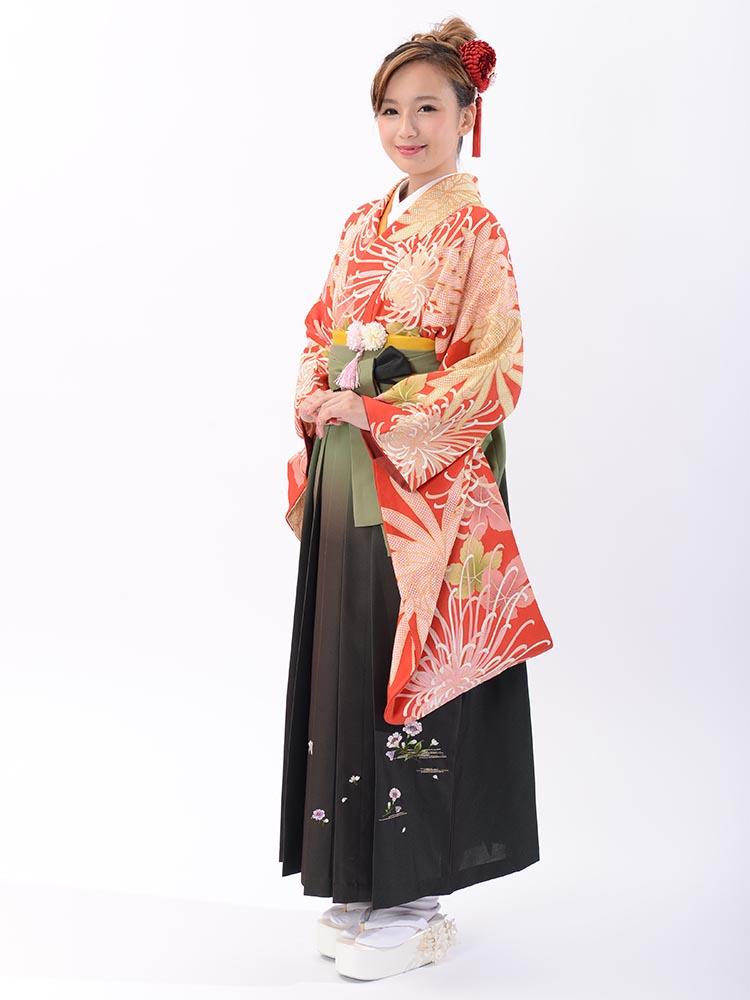 【高級卒業式袴レンタル】2-10 卒業式の袴レンタル・正絹二尺袖着物「赤地 乱菊」 サイズ 乱菊