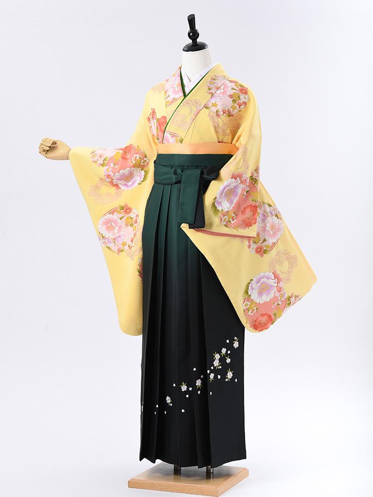【高級卒業式袴レンタル】2-54 卒業式の袴レンタル・正絹二尺袖着物「黄色 花丸紋」 サイズ 花