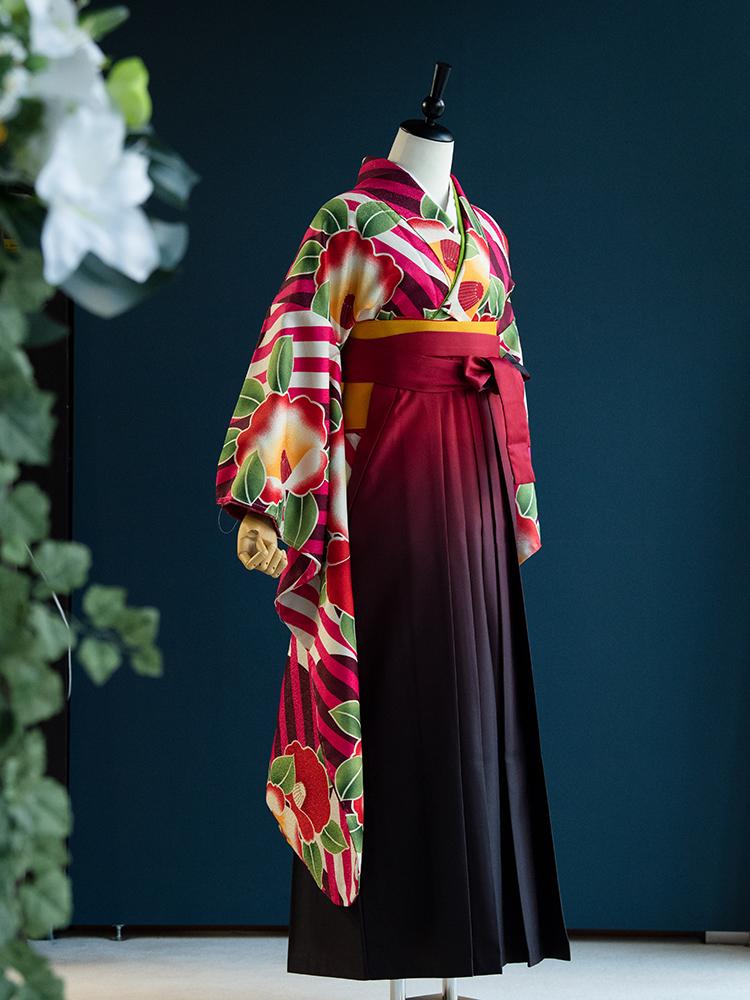 【高級卒業式袴レンタル】901f 卒業式の袴レンタル 「ピンク・椿」 振袖+袴