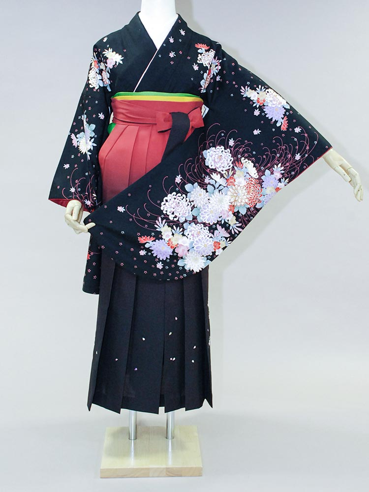 【高級卒業式袴レンタル】an-001 黒地 糸菊と花々 サイズ 菊