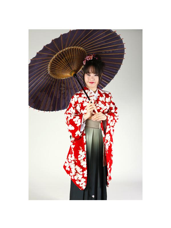 【高級卒業式袴レンタル】2-17 卒業式の袴レンタル・正絹二尺袖着物「赤地 桜づくし」 サイズ 桜