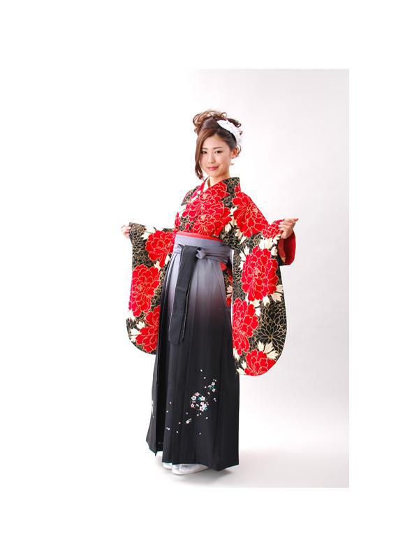 【高級卒業式袴レンタル】2p-16 黒い饅頭菊地に赤い牡丹 サイズ 饅頭菊・牡丹