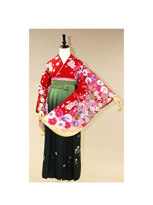 【高級卒業式袴レンタル】an-003 赤地 洋花 サイズ 洋花