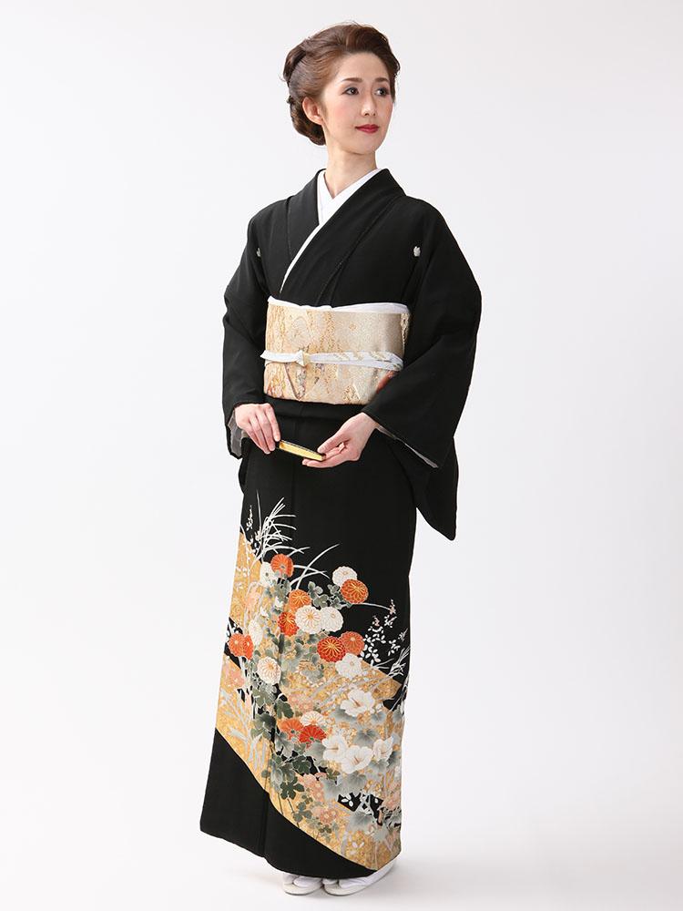 【高級黒留袖レンタル】t-316 琳派調の菊花柄 MLサイズ 琳派・菊花柄